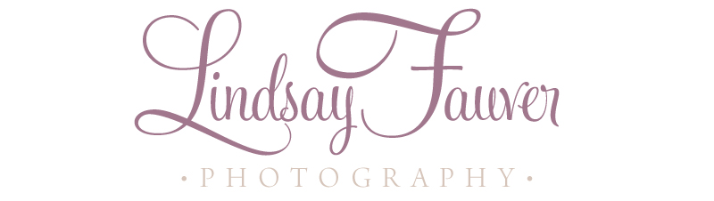 Branding for Lindsay Fauver Photography | Branding Design by Ashlee Proffitt