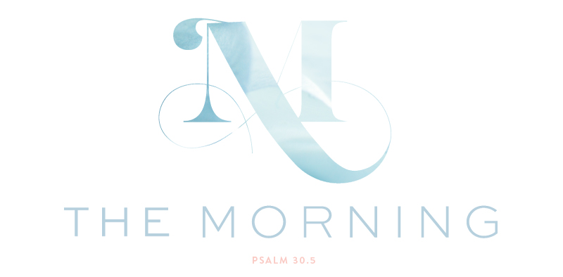 Brand Elements | The Morning: A Community for Women Grieving the Loss of a Baby | Branding by Laura Kashner | The Morning by Ashlee Proffitt