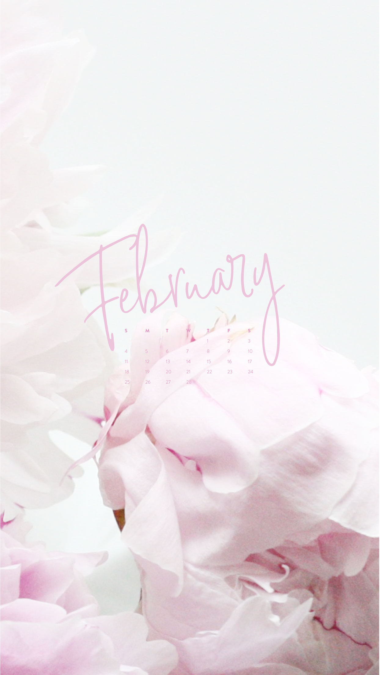February Wallpapers Phone Tablet Desktop Ashlee Proffitt