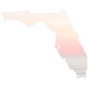 What I learned from Hurricane Irma | Ashlee Proffitt